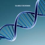 Silabus Mata Kuliah Biokimia