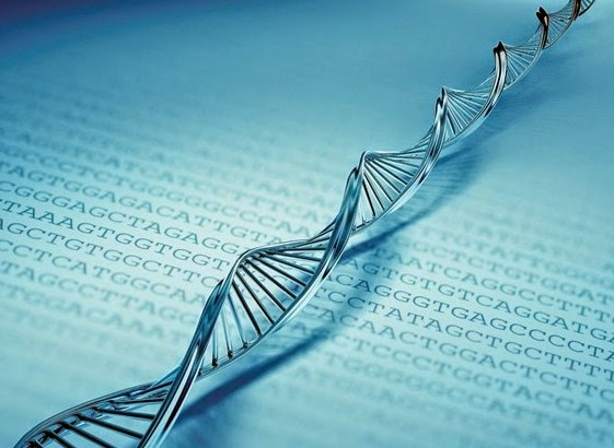Download Ebook Genetika