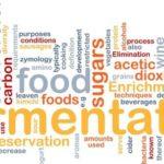 Peranan Mikroorganisme Dalam Teknologi Fermentasi