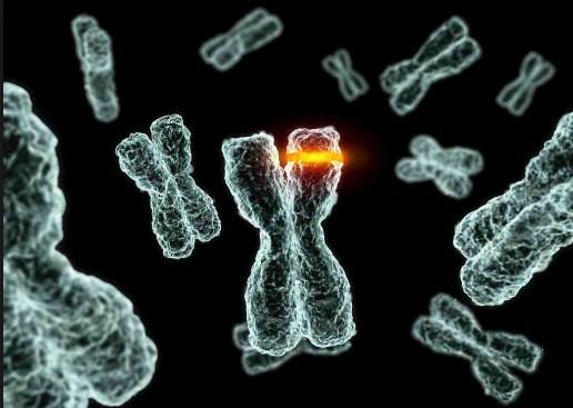 Soal dan Pembahasan Mutasi