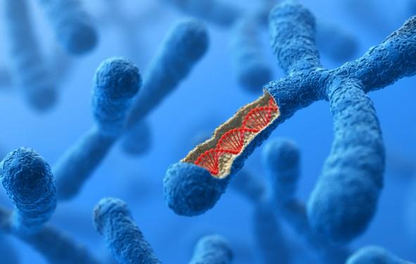 30 Soal dan Pembahasan Genetika